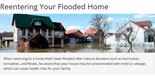 After a Flood