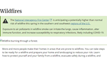 Wildfires - Landing Page
