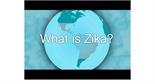 Zika 101