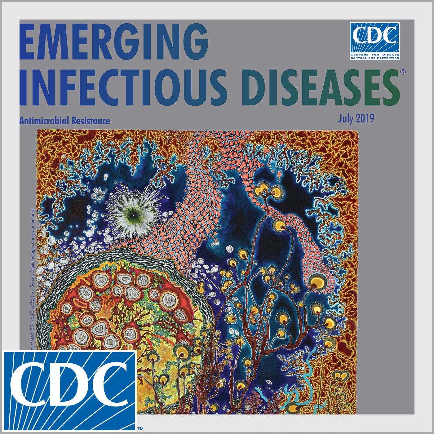 Emergence of MDR Campylobacter jejuni bacterium